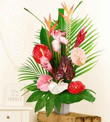 livraison bouquet fleurs colis fleurs vrac colibri fleurs lointaines. Black Bedroom Furniture Sets. Home Design Ideas