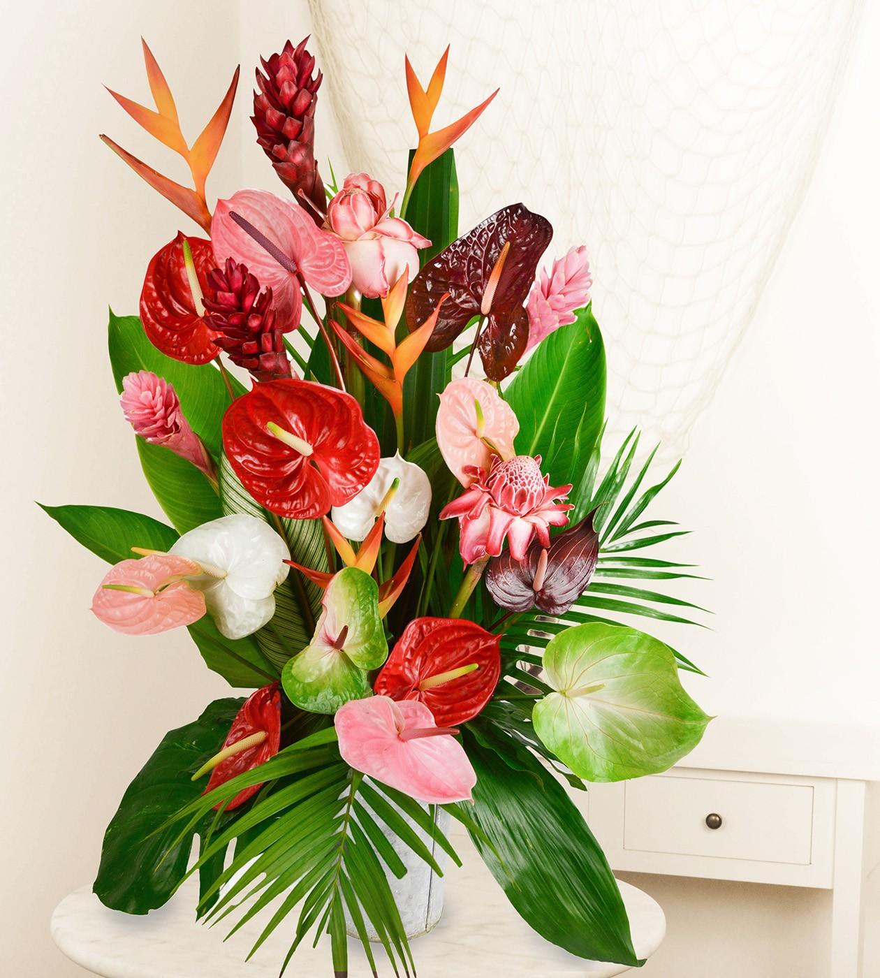 livraison colis fleurs vrac salines | fleurs lointaines
