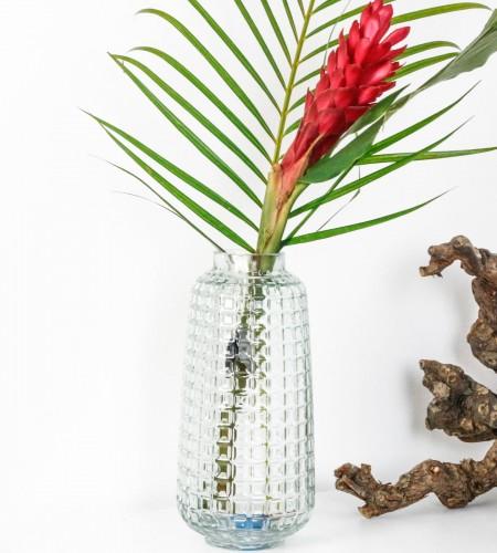 Vase & Échantillon de jungle